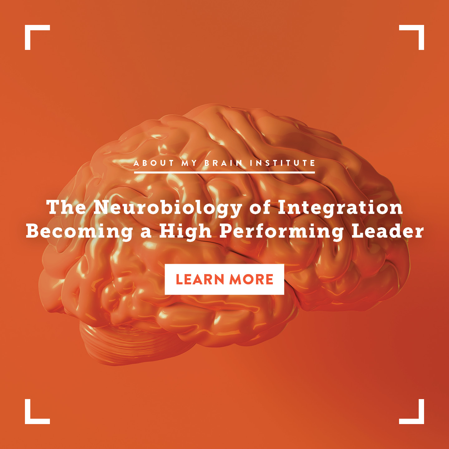 TP 1080 X 1080-The-Neurobiology-Of-Integration-Becoming-A-High-Performing-Leader